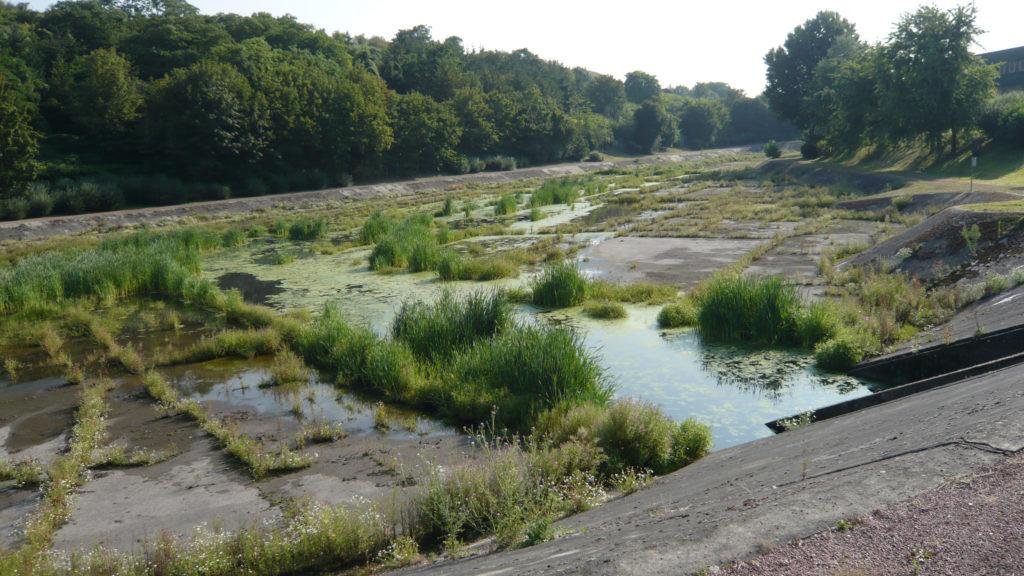 Artificialisation des milieux naturels